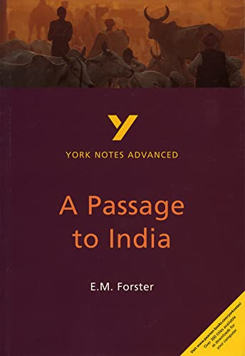 9780582414624: A Passage to India: York Notes Advanced: Study Notes