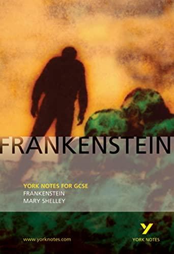 9780582772670: Frankenstein: York Notes for GCSE