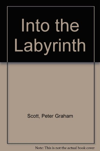9780584310863: Into the Labyrinth