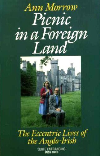 Picnic in a Foreign Land: Eccentric Lives of the Anglo-Irish: Morrow, Ann