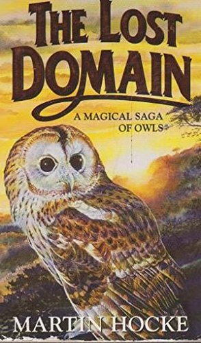 9780586216880: The lost domain