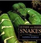 9780590006682: Outside & Inside Snakes