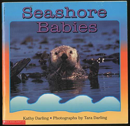 9780590039147: Seashore Babies