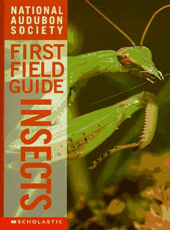 9780590054836: Insects (National Audubon Society's First Field Guides)