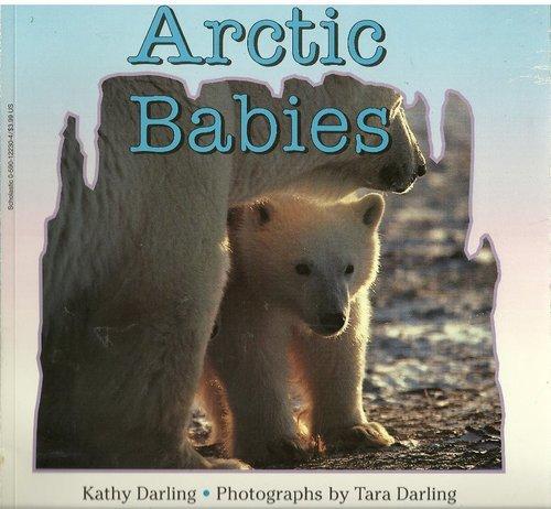 9780590122306: Arctic Babies