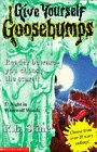 NIGHT IN WEREWOLF WOODS (GIVE YOURSELF GOOSEBUMPS S.) (0590193732) by R.L. STINE