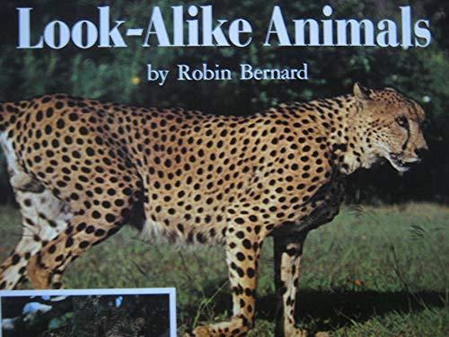 Look-Alike Animals: Robin Bernard