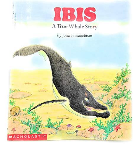 9780590292009: Ibis a True Whale Story [Taschenbuch] by John Himmelman