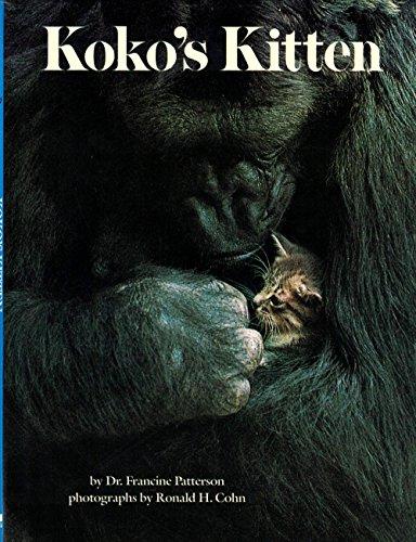 9780590338110: Koko's Kitten