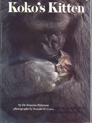 Koko's Kitten: Patterson, Francine