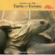 9780590421331: Turtle and Tortoise (Animals in the Wild Series)