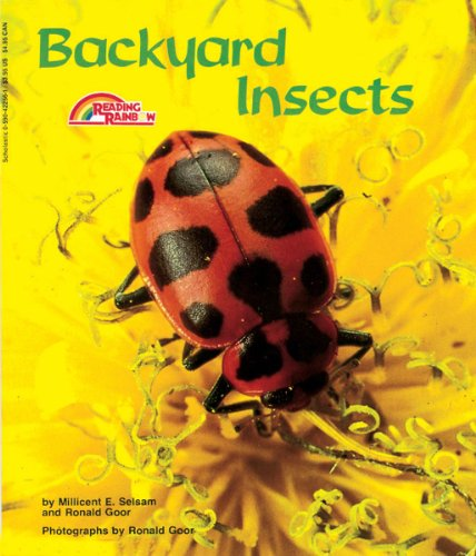 9780590422567: Backyard Insects
