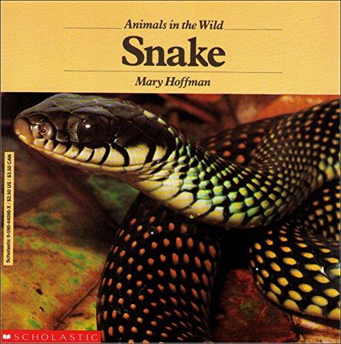 9780590440905: Snake