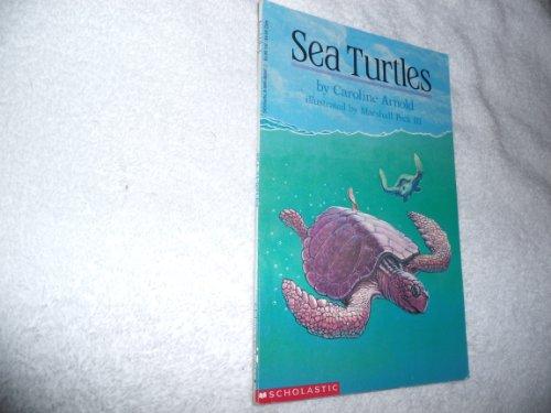 Sea Turtles: Arnold, Caroline