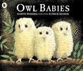 9780590582841: Owl Babies