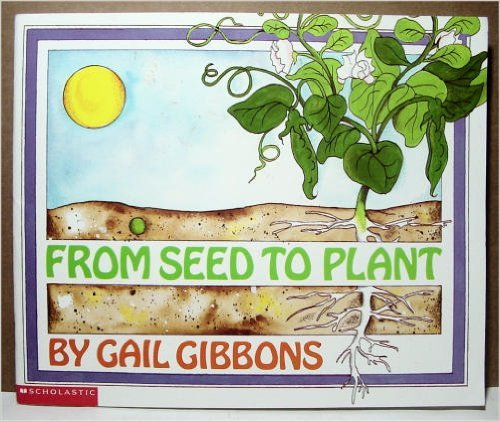 9780590638920: From seed to plant