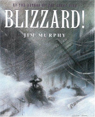 9780590673099: Blizzard