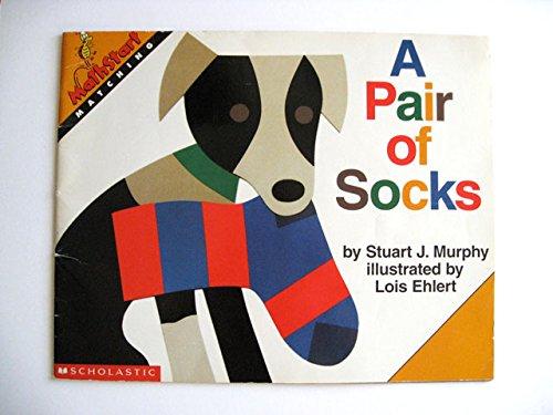 Do These Socks Match?: Murphy, Stuart J.