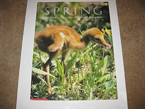 9780590727181: Spring