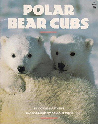 9780590763011: Polar Bear Cubs