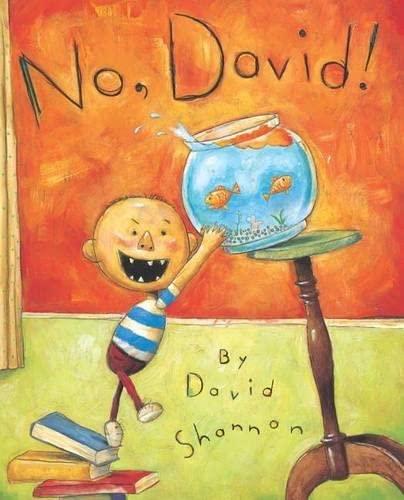 No, David!: Shannon, David
