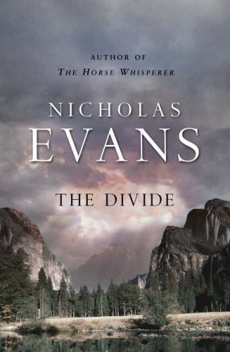 9780593045268: The Divide