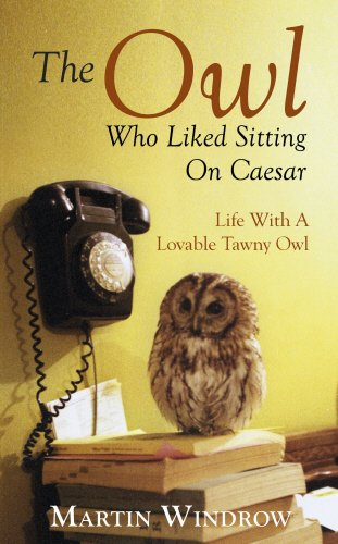 9780593072714: The Owl Who Liked Sitting on Caesar