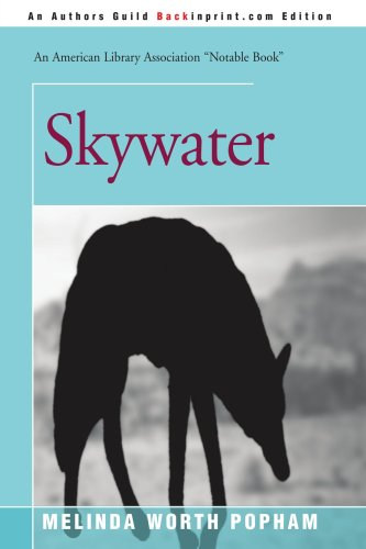 9780595184491: Skywater