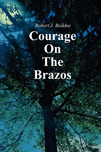 9780595210282: Courage On The Brazos