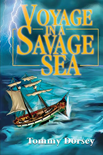 9780595247486: Voyage in a Savage Sea