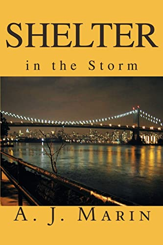 9780595253333: Shelter in the Storm