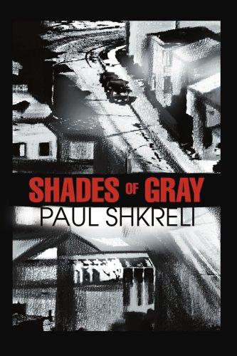 9780595276349: Shades of Gray