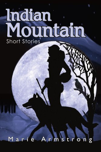 9780595290796: Indian Mountain: Short Stories