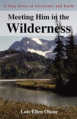 9780595318346: Meeting Him in the Wilderness: A True Story of Adventure and Faith