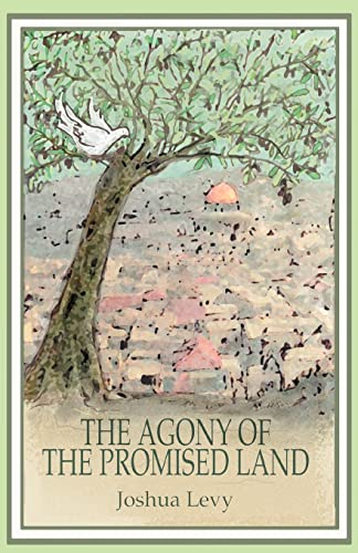 9780595321339: The Agony Of The Promised Land