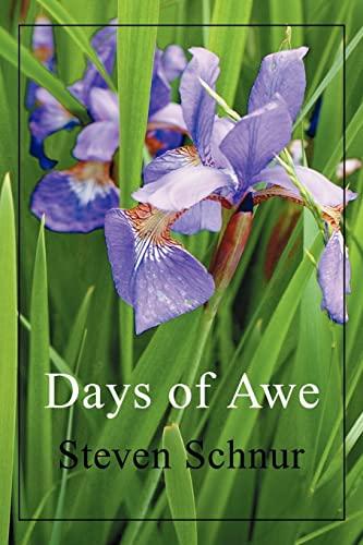 9780595332489: Days Of Awe