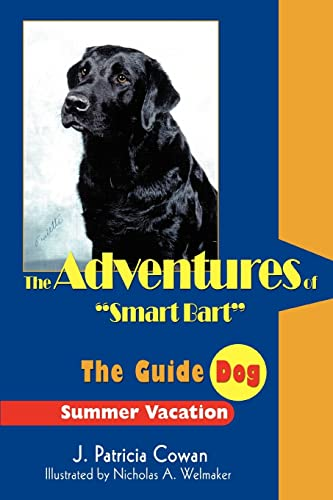 9780595334100: The Adventures of