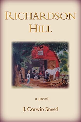 9780595401178: Richardson Hill: A Novel