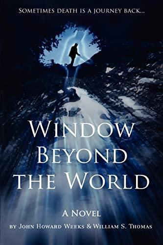 9780595402847: Window Beyond the World