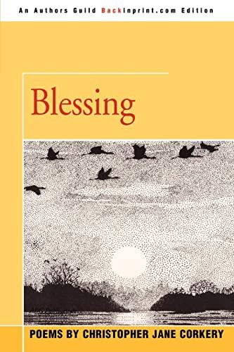 9780595409730: Blessing