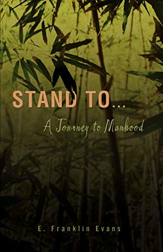 9780595450534: Stand To ...: A Journey to Manhood