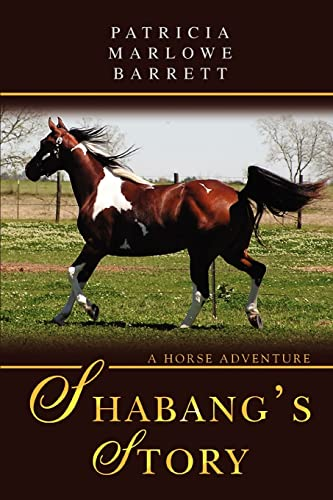 9780595472550: Shabang's Story: A Horse Adventure