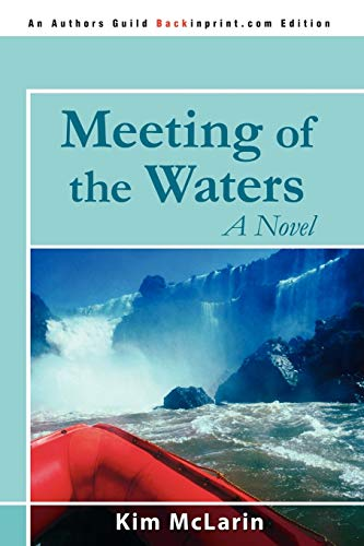 9780595531691: Meeting of the Waters: A Novel