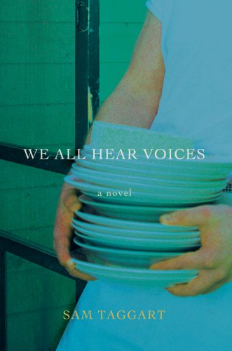 9780595685417: We All Hear Voices