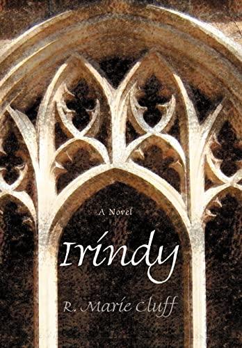 9780595694815: Irindy