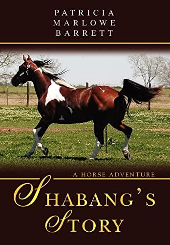 9780595709595: Shabang's Story: A Horse Adventure