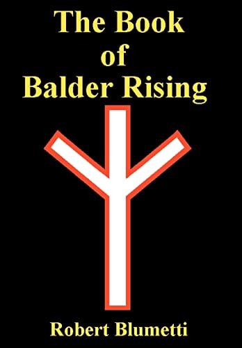 9780595841936: The Book of Balder Rising