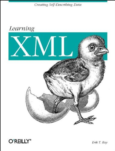 9780596000462: Learning XML: Guide to Creating Self-Describing Data (Classique Us)