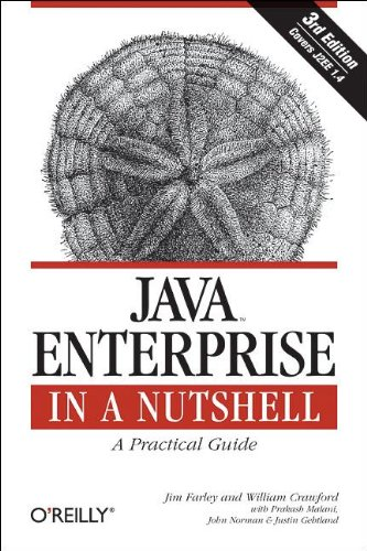 9780596101428: Java Enterprise in a Nutshell