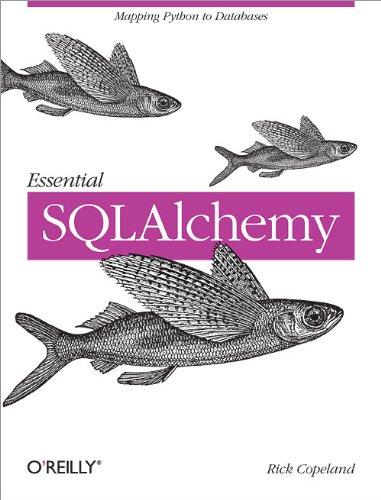 9780596516147: Essential SQLAlchemy